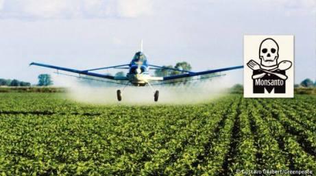 Impacto de agroquímicos en la salud
