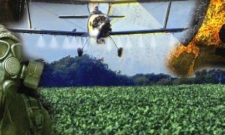 Negocio mortal: El Gobierno da rienda suelta a peligrosos agrotóxicos
