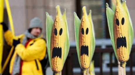 OGM-Terror