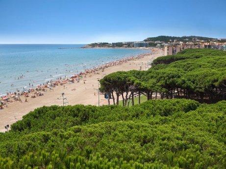 Imatge de la platja de La Pineda. Foto: DT