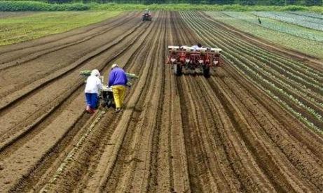 Inicia una campaña ecologista contra el proyecto de ley de semillas en Argentina