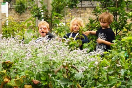 Los niños aprenden a estar en contacto con la agricultura desde edades muy tempranas, así como permacultura o acuaponia. / Incredible Edible